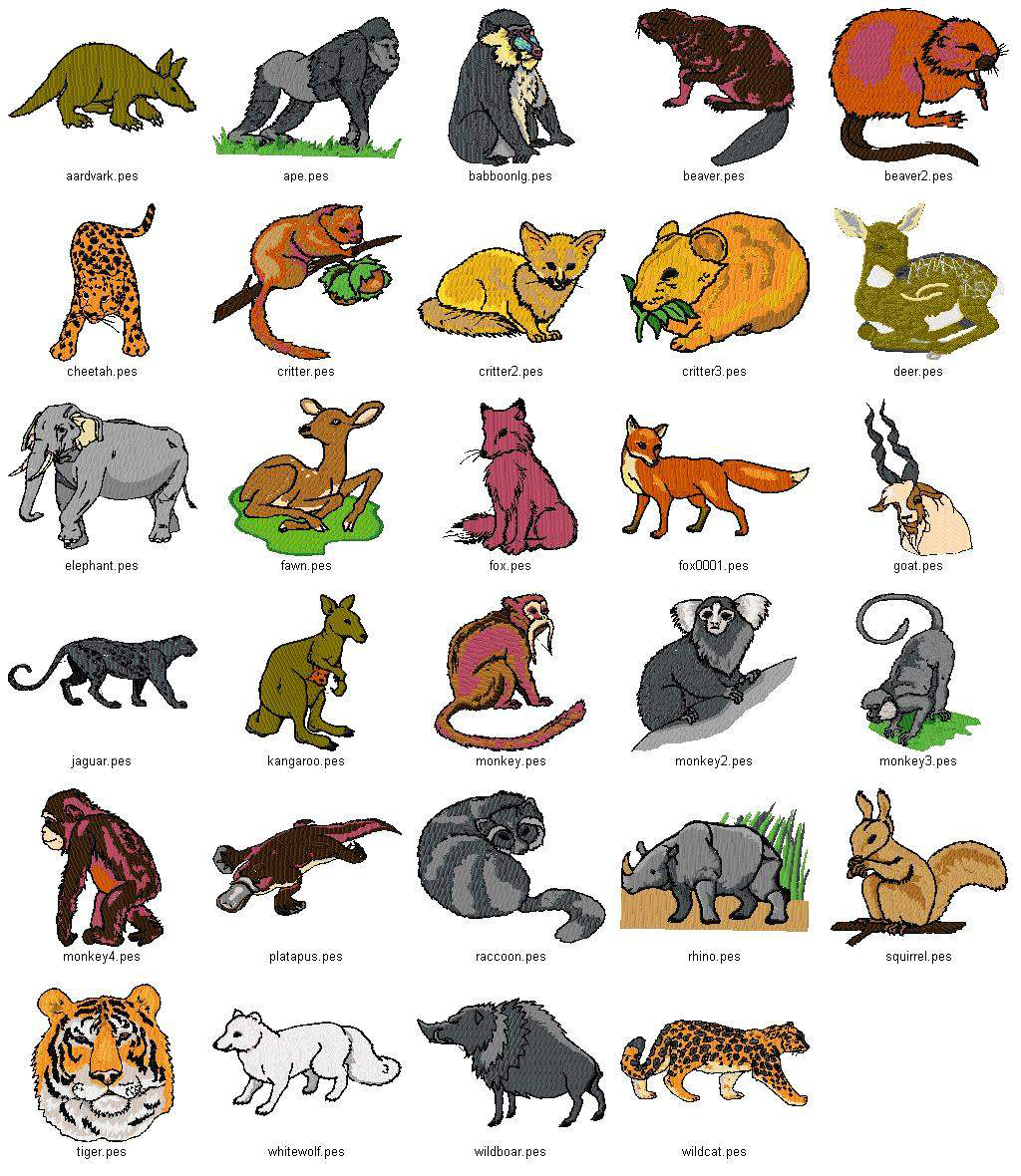 animals wild pet names chart animal information india embroidery african mammals machine collection